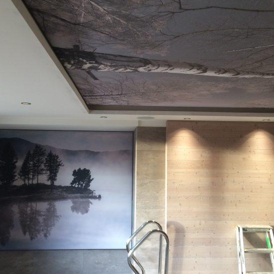 Entreprise toile murale lyon